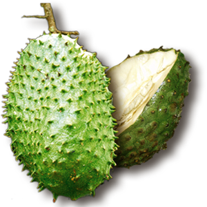 graviola-fruit